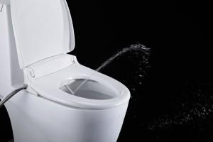 Toto Toilet Seat Bidet
